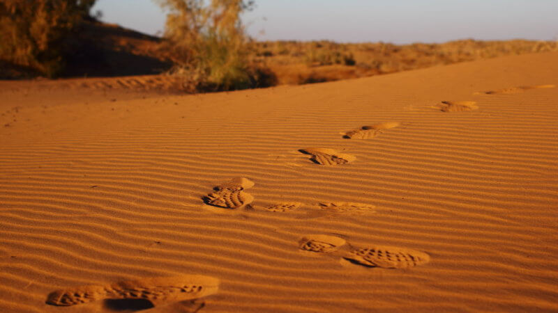 A trail of foot prints left on a sand dune.