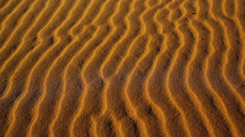 Close-up photo of golden coloured sand ripples.