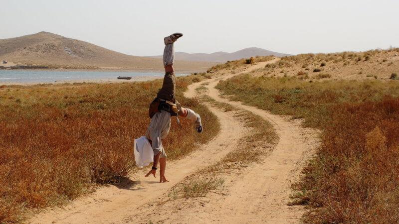 A desert runner cartwheeling along the shores of Aydar Lake in Uzbekistan.