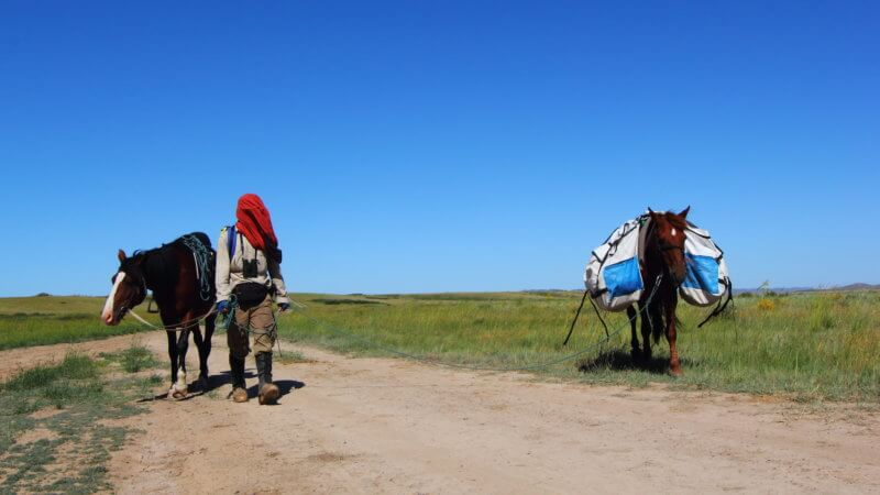 Two horses and one owner walking on a dirt road with his head covered from the sun.