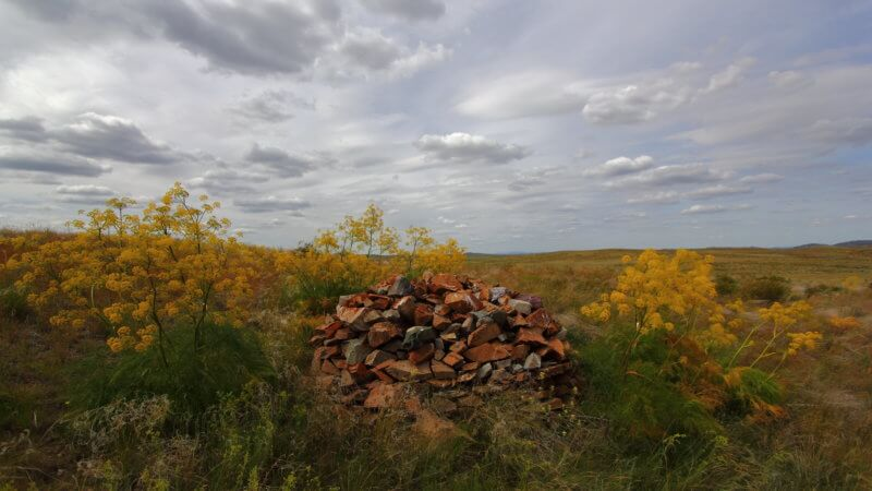 Burial mound surrounded by yellow flowers in the remote Kazakhstan steppe.