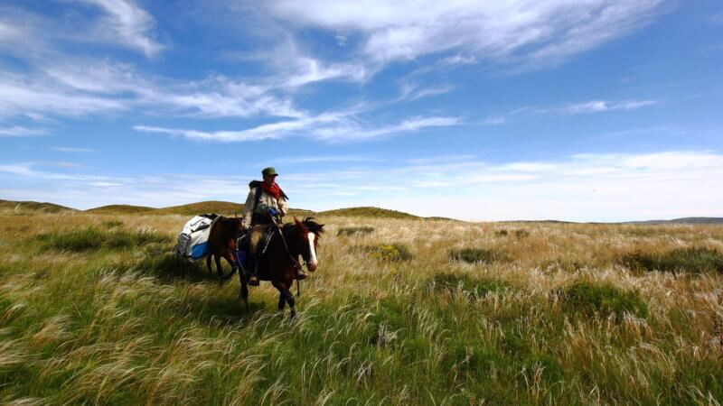 A horse rider tows his pack animal across verdant Kazakhstan grasslands.
