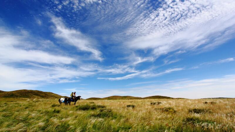 A lone horse and rider standing in the Kazakhstan steppe beneath a beautiful, big sky.