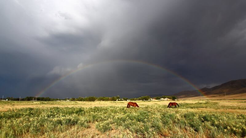 A rainbow arches across a stormy Kazakhstan sky with two horses grazing.