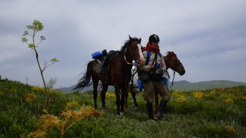 Jamie standing between two horses in a green field on overcast day, photographed in East Kazakhstan.