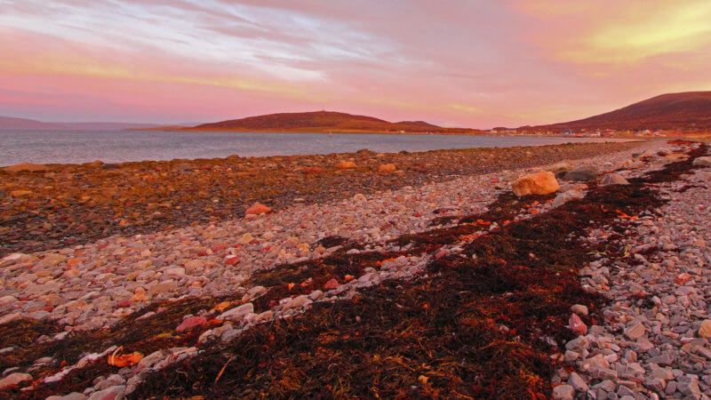 A tidal shoreline in the early morning with faint Northern Lights overhead.
