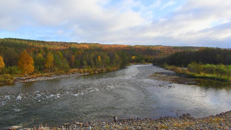 An Arctic river in Norway's Sør-Varanger region.