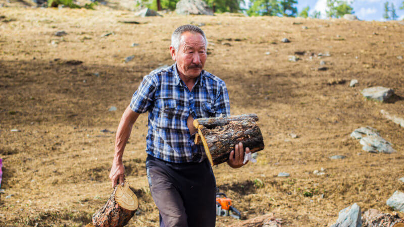 An older man with checked shirt carrying cut logs in his hand.