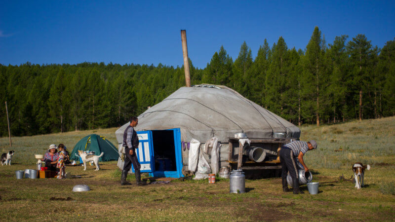 A yurt on the forest edge with a blue door and stove pipe coming out of its roof.