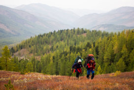 Two backpack-wearing hikers ascending a steep hill above a pine forest in Tuva.