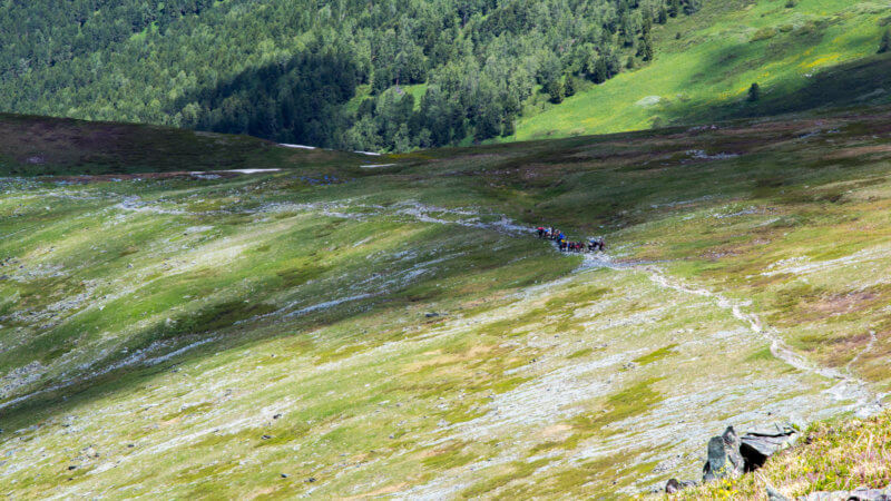 A far shot of a large group of hikers ascending up a hill into the mountains.