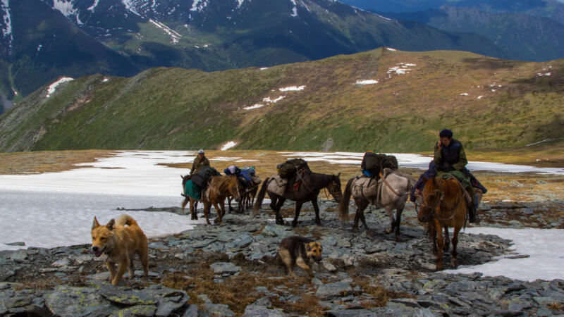 Altai horsemen riding on horseback ascending up a mountainside.