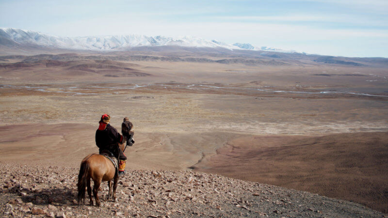 Eagle hunter holding eagle, sat on a horse, looking out over a wild expanse of Mongolian plateau.