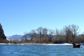 Winter time photo of packrafter paddling down the Khovd River.