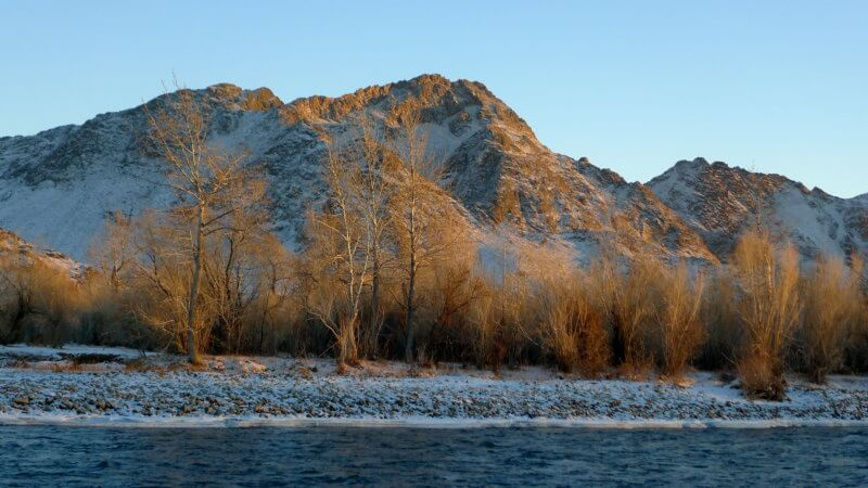 Winter sunset beside the Khovd River, with golden forest and mountains in distance.