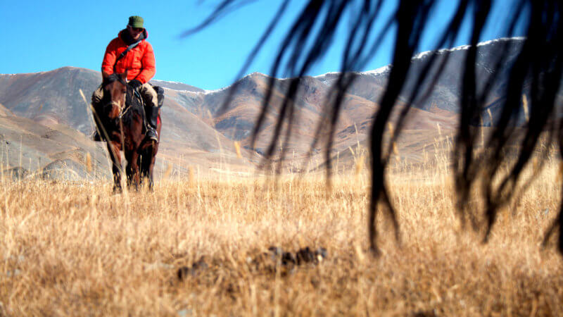 A ground shot looking up at a man riding on his horse and a horse tail covering half the image.