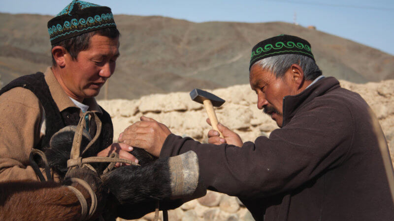 A mid-shot of two Kazakh men hammering a shoe on to a horse's hoof.