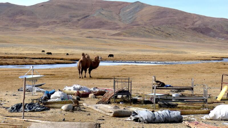 A camel stands beside a river and in front are nomad's personal possessions ready for packing.