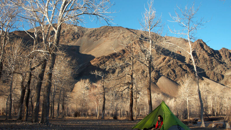 A green Nemo pyramid tent in a treeless forest beside the Khovd River in Western Mongolia.