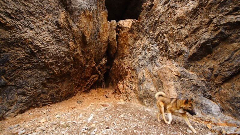 A dog walks past the camera as one man inspects the entrance of a large mountain cave.