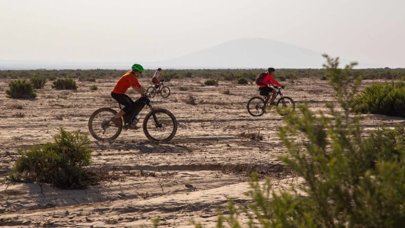 Side shot of three cyclists traversing a sandy desert in Ethiopia.