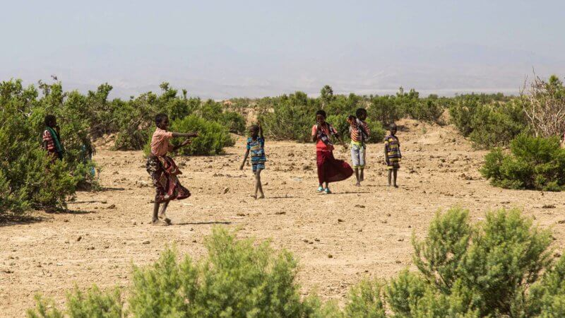 A group of Afar kids walking through the desert.