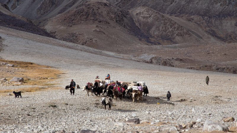 A family of Wakhi nomadic herders with yaks and donkeys travel across a plateau.