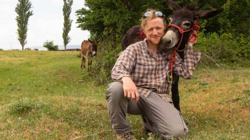 A man crouched down next to a cute little donkey with a red bridle.